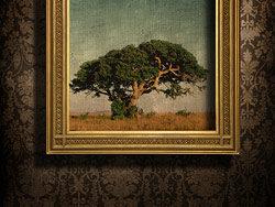漂亮的欧式相框与墙纸高清图片-6