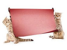 动物与广告牌高清图片2