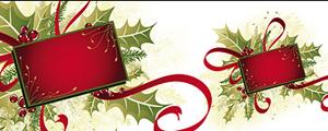 圣诞节装饰图案矢量图
