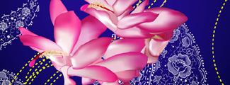 古典手绘花纹矢量图
