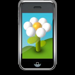 小花Iphone手机壁纸