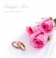 婚戒与粉色玫瑰花图片