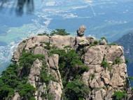 黄山奇石石猴观海图片