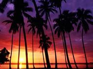 海边黄昏景色图片