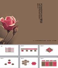 玫瑰飘香ppt模板