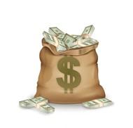 美元符号的钱袋子矢量图片