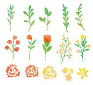 水彩花卉和叶子矢量图片