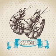 手绘虾矢量图片