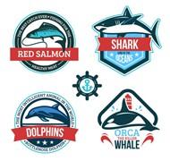 鱼类标签矢量图片