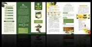 紫苏油宣传单矢量图片