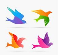 拼色鸽子设计矢量图片