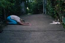 婴儿式伸展瑜伽图片