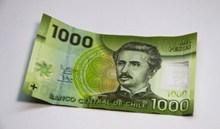 千元欧元纸币图片素材
