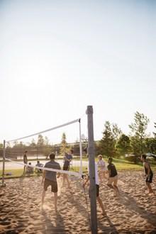 沙滩排球游戏图片大全