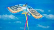 猫头鹰图案风筝图片下载