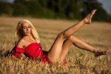 大长腿欧美美女人体摄影图片下载