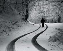 雪中行走背影图片下载
