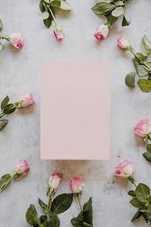 玫瑰花花框背景图片素材
