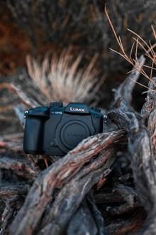松下lumix数码相机图片