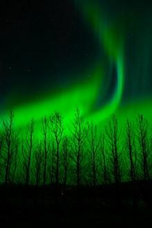 绚丽梦幻绿色极光高清图片