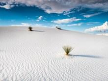 白色沙漠风光图片