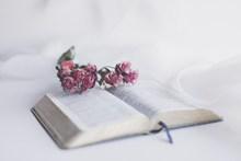 清新冷色调书籍精美图片