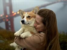 美女抱柯基犬精美图片