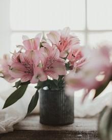 淡雅粉色百合花插花图片下载