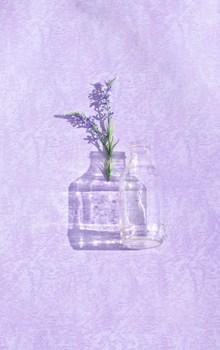 紫色花穗和空瓶子高清图