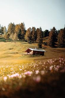 秋季山坡小木屋高清图