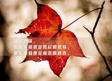 秋天文字精美图片