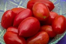红色新鲜小番茄图片