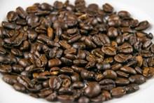 咖啡豆豆类图片