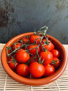 一碗美味西红柿高清图