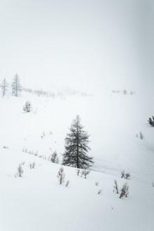 冬季冰天雪地图片大全