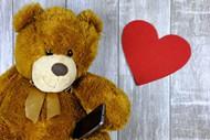 可爱小熊玩偶图片素材