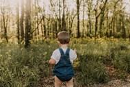 绿色树林萌娃背影高清图片