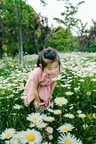 白色菊花花海小女孩图片素材