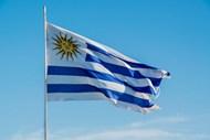 乌拉圭飘扬国旗图片