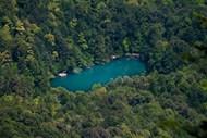 森林中的一片湖图片大全