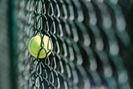 铁丝网上网球图片下载