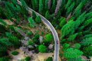 汽车穿越公路树林图片大全
