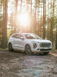树林白色SUV汽车图片