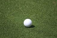 绿茵地高尔夫球图片