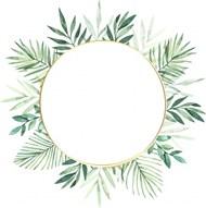 绿色水彩树叶圆框高清图片