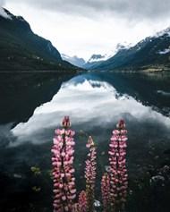 雾气缭绕山水风景高清图片