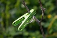 绿色晾衣夹子高清图片