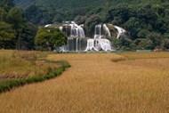 稻田瀑布风景图片大全