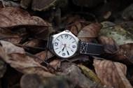 树叶上的手表高清图片