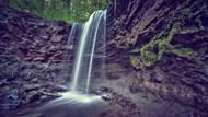 森林泉水瀑布高清图片
